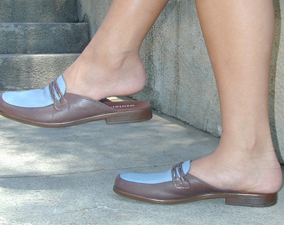 C:\Users\Retish\Downloads\Mules_loafers_brown-blue_low-heel.jpg