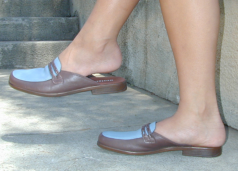 C:\Users\Retish\Downloads\Mules_loafers_brown-blue_low-heel.jpg